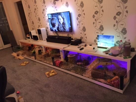 Une Grande Cage Cochon Dinde Avec 5 Tables LACK Bidouilles IKEA