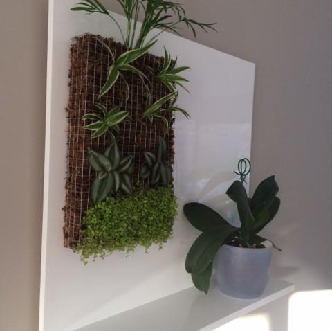 Petit mur v g tal et support fait maison for Mur vegetal interieur maison