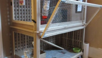 Un Palace pour les Lapins (clapier d'intérieur pour lapins)