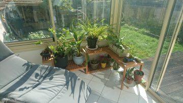 Etagère à plantes avec MOLGER