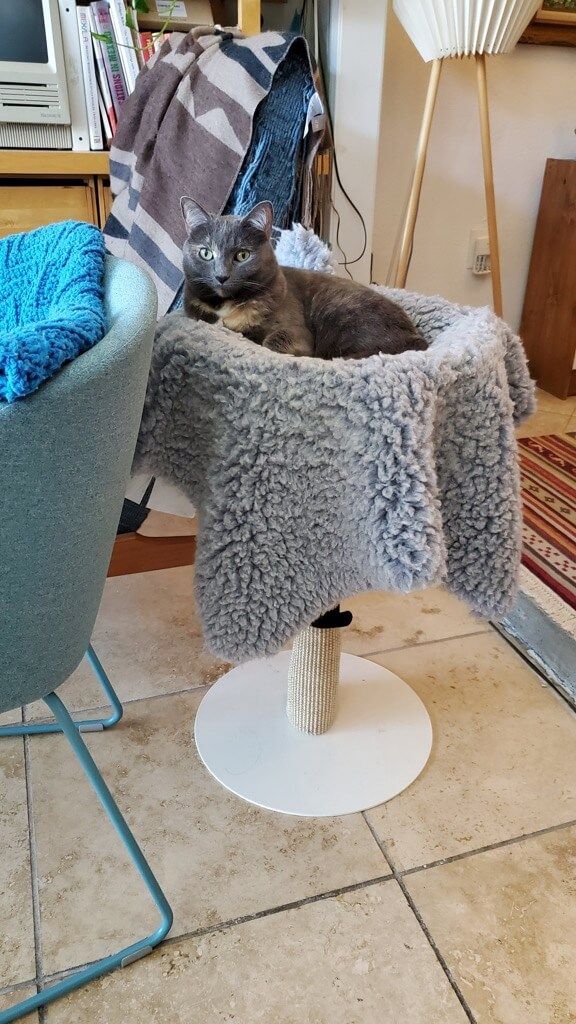 cat bed scratch post IKEA