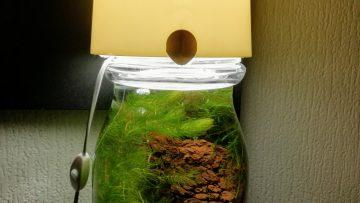 Une lampe aquarium